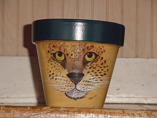 Leopard Face