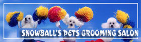 Snowball Salon(tm)