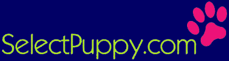 zCheck out the