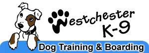 CLICK HERE to Visit
