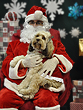 Ryleigh, a 15-Month-Old